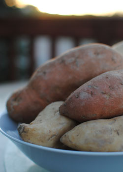 Post image for Sweet Potatoes: Tasty Tubers