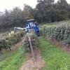 Thumbnail image for Sponsored Video: Lake Erie Wine Trail