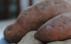 Thumbnail image for Sweet Potatoes: Tasty Tubers