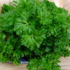 Thumbnail image for Lamb and Fresh Herb Khoresh