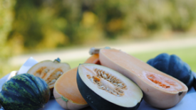 Thumbnail image for Winter Squash: A Must For Fall