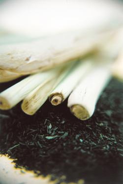 Post image for Lemongrass: Perfumed Allure