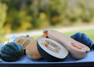 Post image for Winter Squash: A Must For Fall